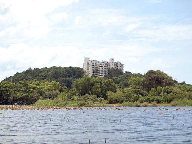 Natuurgebied met een natuurlijke vijver