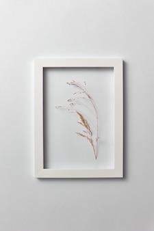 Natuurlijk ecokader met droge plantentak op een lichtgrijze muur. plaats voor tekst. bovenaanzicht.