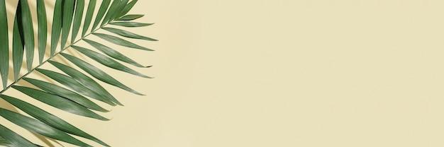 Natuurlijk groen palmblad met zonnescherm op lichtgele achtergrond met exemplaarruimte