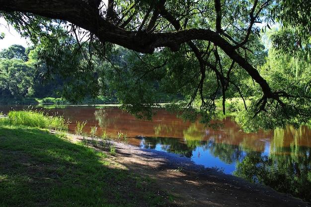 Natuurlijk landschap met een rivier en bomen