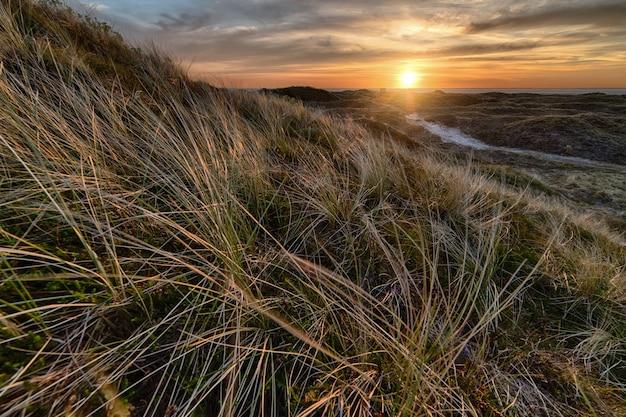 Natuurlijk landschap tijdens zonsondergang