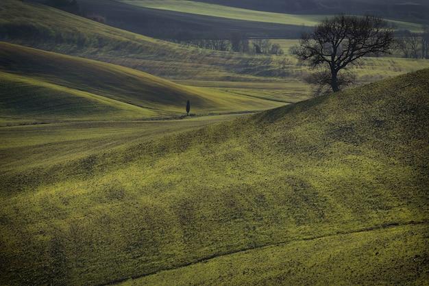 Natuurlijk landschap