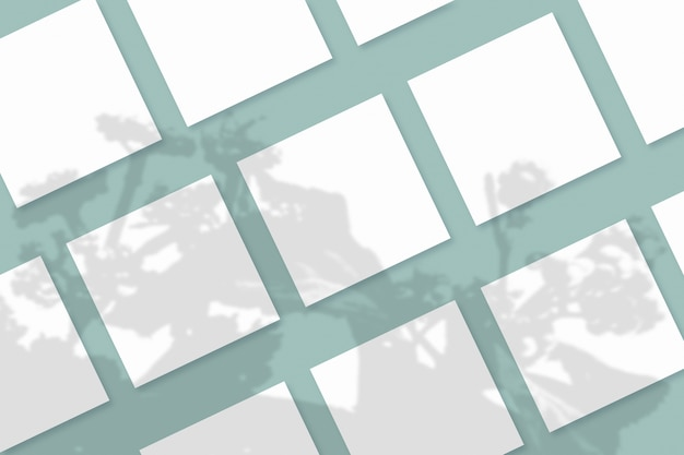 Natuurlijk licht werpt schaduwen van de plant op verschillende vierkante vellen wit papier die op een blauwgroene gestructureerde achtergrond liggen
