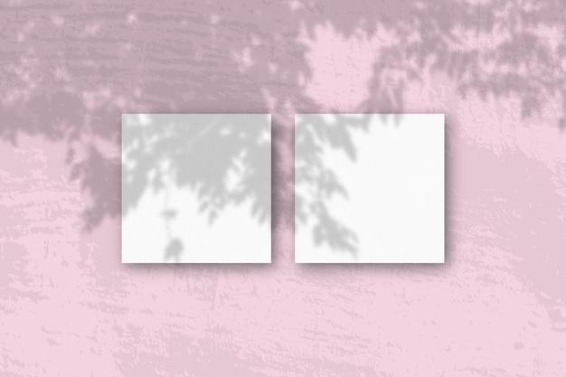Natuurlijk licht werpt schaduwen van een appelboomtak op 2 vierkante bladen