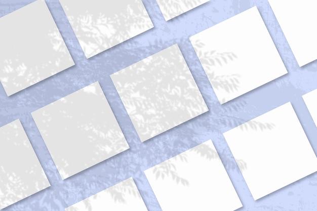 Natuurlijk licht werpt schaduwen van een exotische plant op verschillende vierkante platen