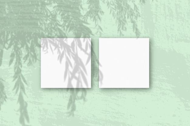 Natuurlijk licht werpt schaduwen van een wilgentak op 2 vierkante bladen