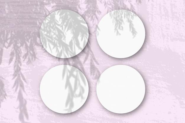 Natuurlijk licht werpt schaduwen van een wilgentak op 4 ronde vierkante bladen