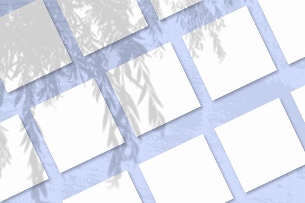 Natuurlijk licht werpt schaduwen van een wilgentak op verschillende vierkante platen
