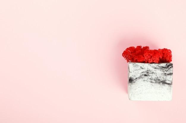 Natuurlijk mos gestabiliseerd rood. bloem in pot.