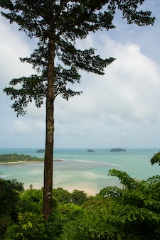 Natuurlijk uitzicht op het strand van kai bae;