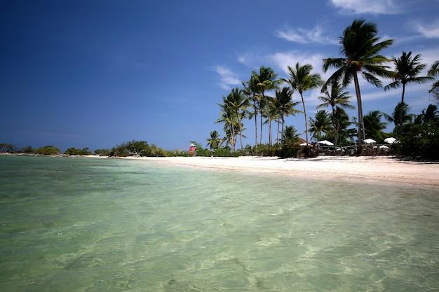 Natuurlijk zwembad in het paradijs, morro de sao paulo, salvador, brazilië