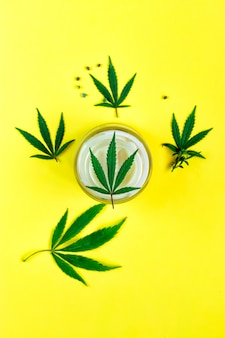 Natuurlijke cannabiscrème, hennep, hydraterende cbd-lotion. cosmetisch product.
