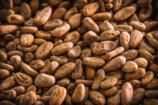 Natuurlijke chocolade geroosterde cacao op roatan island. honduras