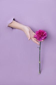 Natuurlijke cosmetica voor de huid van de handen, hydraterend en voedend. bloemextract, een vrouw met rode bloemblaadjes en bloemen in haar handen