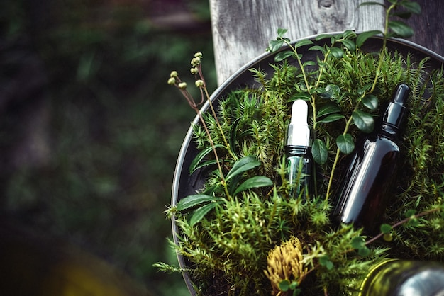 Natuurlijke cosmetica voor schoonheid van gezicht en lichaam op groen van planten