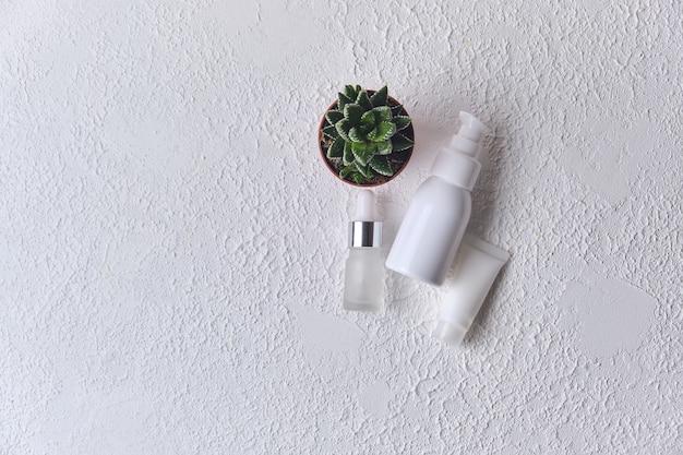 Natuurlijke cosmetische olie, serum, gel met aloë vera-extract in verschillende containers en kleine pot aloë op witte achtergrond. biologische cosmetica. bovenaanzicht plat lag. merkloze mock-up voor cosmetica