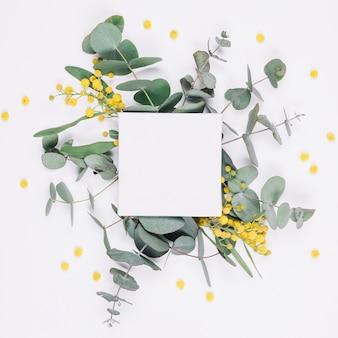 Natuurlijke decoratie met leeg canvas