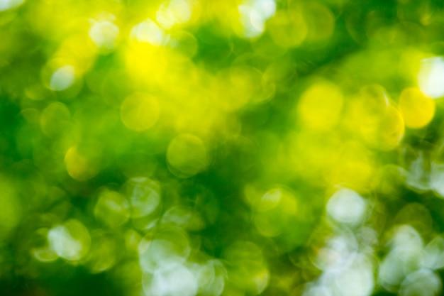 Natuurlijke groene bokeh abstracte achtergrond