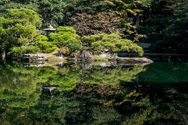 Natuurlijke groene bomen in een japanse tuin