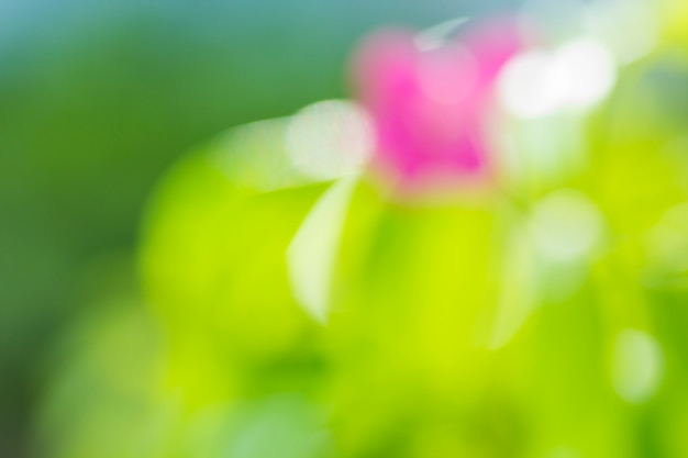 Natuurlijke groene vage achtergrond