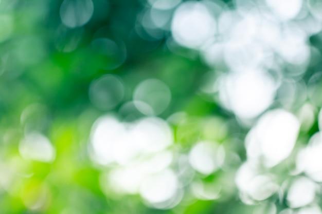Natuurlijke groene vage samenvatting voor de zomer