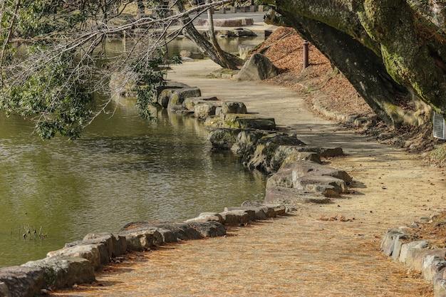 Natuurlijke het lopen manier dichtbij de vijver bij het nationale park van nara.