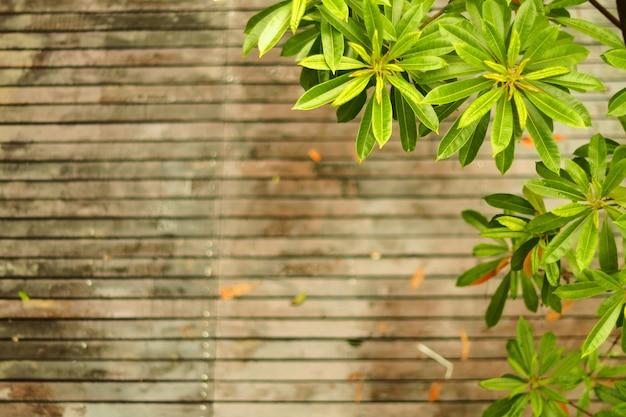 Natuurlijke houten fotoachtergrond