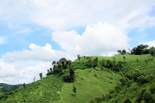 Natuurlijke landschapsmening van dorp en graan dat op berg wordt ingediend