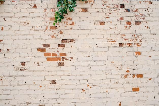 Natuurlijke lichte baksteen abstracte textuur achtergrond. bakstenen muur textuur beige. bakstenen muur als achtergrond