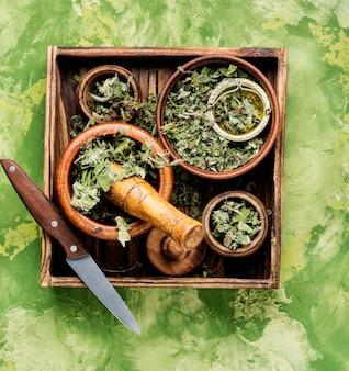 Natuurlijke medische kruiden