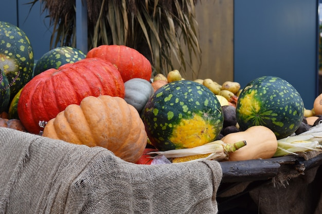 Natuurlijke plantaardige herfst decor in de stad. straat herfst decor met pompoenen