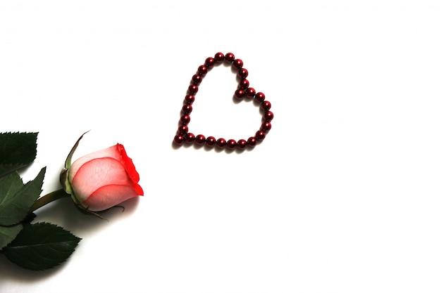 Natuurlijke roos en een hart gemaakt van rode magnetische kralen zijn geïsoleerd