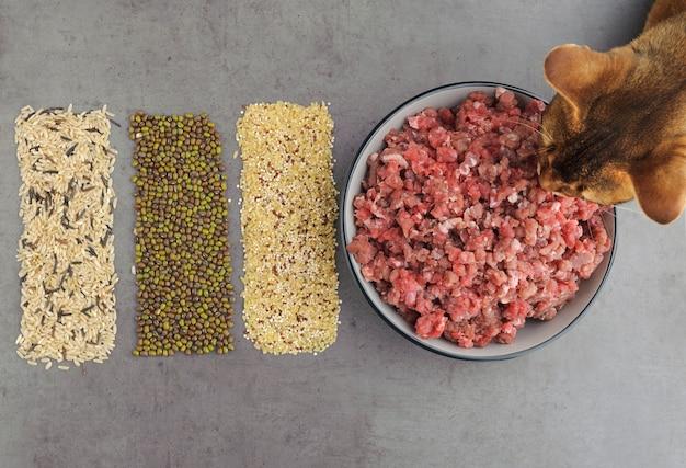 Natuurlijke ruwe ingrediënten voor voedsel voor huisdieren op grijze achtergrond. plat leggen.