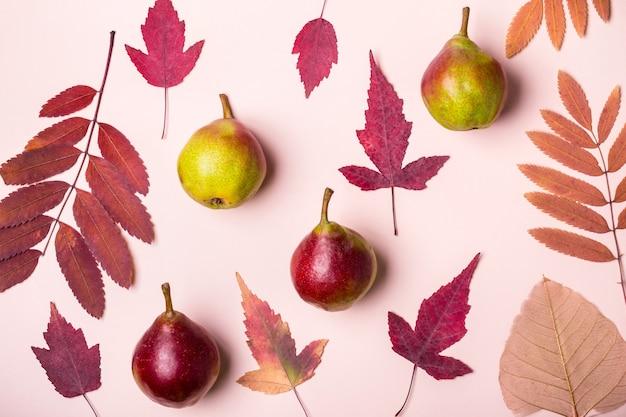 Natuurlijke samenstelling van droge roze bladeren en peren op roze achtergrond. herfst oogst concept.