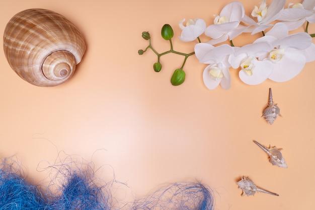 Natuurlijke schelpen, veilige huisvesting voor het leven in zee. op een beige achtergrond met orchideebloemen.
