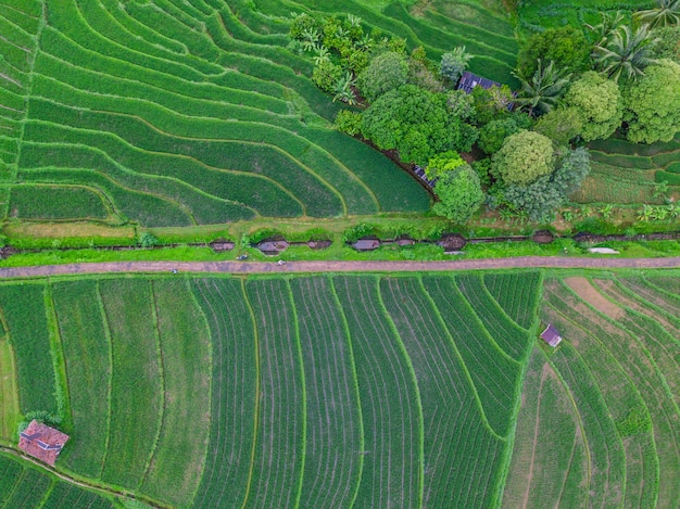 Natuurlijke schoonheid van indonesië met luchtfoto's in de bergen