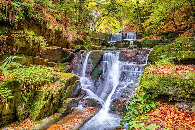 Natuurlijke stroomversnellingen van een waterval in een herfstbos