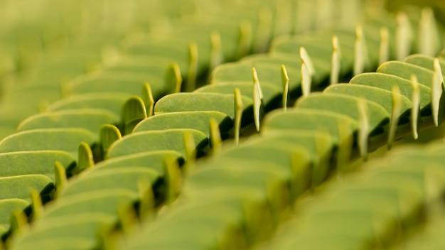 Natuurlijke textuur organische achtergrond