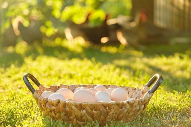 Natuurlijke verse biologische boerderij eieren in de mand