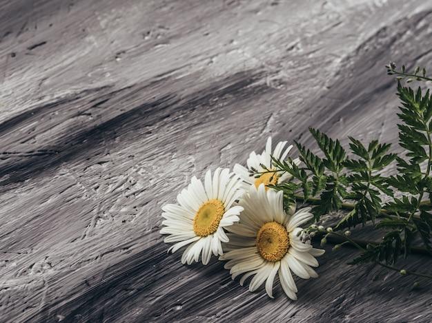 Natuurlijke zomerbloemen op grijze achtergrond.