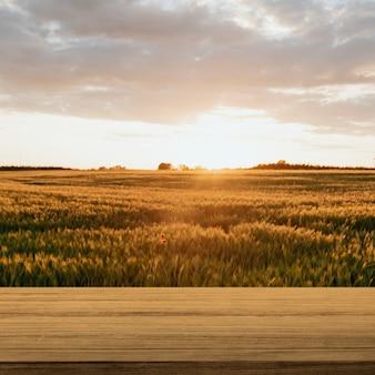 Natuurproductachtergrond, boerderij en zonlicht