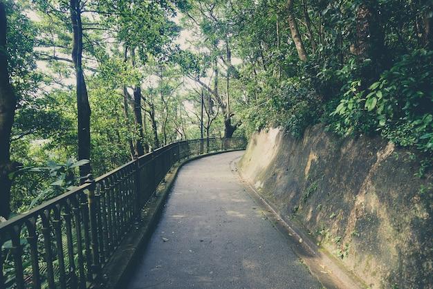 Natuurweg, weg naar de natuur