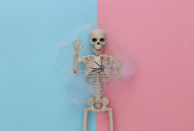 Nep skelet in spinnenweb op roze blauwe pastel. halloween-decoratie, eng thema