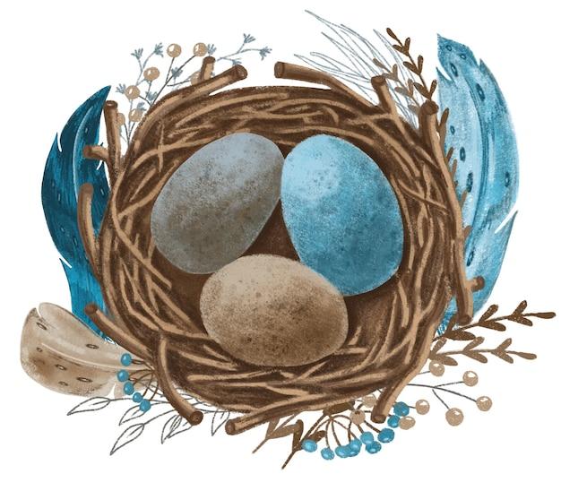 Nest met blauwe, bruine, grijze eieren en turquoise veren, met de hand getekende illustratie