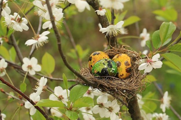 Nest met paaseieren op een bloeiende kersenboom zeer zachte selectieve aandacht