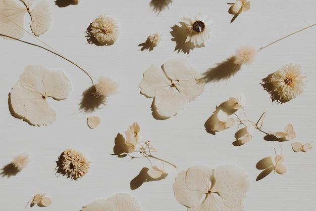 Neutrale bloemensamenstelling met droge bloembladen en takken op grijs