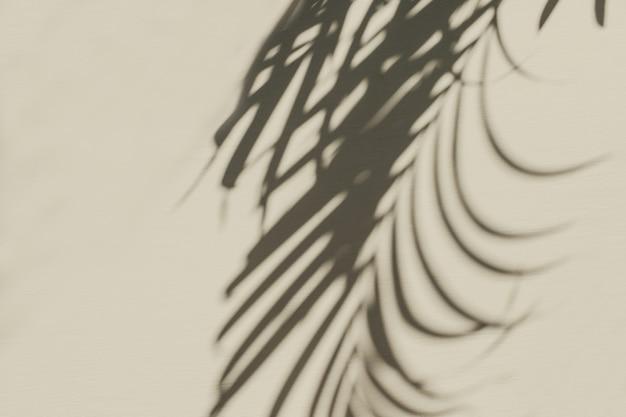 Neutrale bloemensamenstelling met het silhouet van de tropische palmtak op pastel