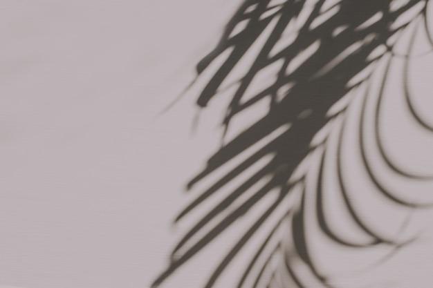 Neutrale bloemensamenstelling met tropisch palmtaksilhouet op pastelroze
