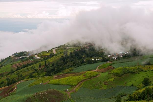 Nevelig landschap met bewolkt op de berg in kaokho, petchabun-provincie, thailand