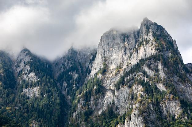 Nevelig landschap van de de bergrand van het bucegi het nationale park